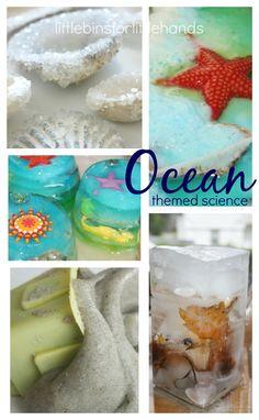 Ocean Themed Science Activities