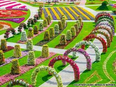The Dubai Miracle Garden has more than 45 million flowers. But the real miracle is that it was built at all
