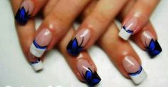 Royal blue - Black - White - Butterfly