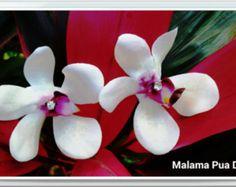 BRIDAL HAIR FLOWER, Hawaiian Ivory Orchid, Tropical Hair Clip, Silk Flowers, Wedding Accessory, Flower Headpiece, Pearl Center,Beach Wedding