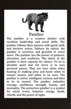 Your Animal Spirit Guide for April 8 is Panther – Witches Of The Craft® Panther Symbolism, Animal Symbolism, Panther Tattoo Meaning, Black Panther Cat, Black Panther Quotes, Black Panther Animal Facts, Panther Facts, Black Jaguar Animal, Tatoo