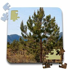 Jos Fauxtographee Realistic - A Pine Tree in a Yard in Pine Valley, Utah - 10x10 Inch Puzzle (pzl_59394_2) 3dRose http://www.amazon.com/dp/B016J4X5FM/ref=cm_sw_r_pi_dp_HB9swb1J3PDD3