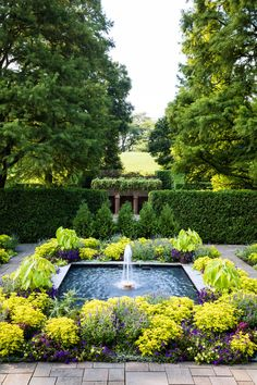 Sunken Garden - The sunken Square Fountain Garden showcases playful, contrasting purple and chartreuse color schemes. Garden Fountains, Fountain Garden, Fountain Design, Fountain Square, Longwood Gardens, Meadow Garden, Sunken Garden, Famous Gardens, Outdoor Landscaping