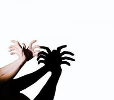 shadows & light |  hand shadow puppets