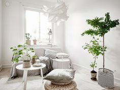 Trendesso: Unbelievable and amazing atmosphere of scandinavian apartment Natural Bedroom, Apartment, Furniture, Small Furniture, House And Home Magazine, Interior, Latest House Designs, Home Decor, Salas Living Room