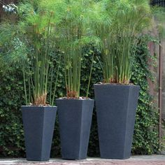 Modern Garden Planters. Polyethylene Tall Tapered Outdoor Planters in 3 Sizes & 4 Colours