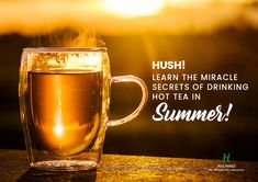 Drinking hot tea in the summer may really help to cool you down. It not only soothes your mind and body but also saves a lot of medical drama by detoxifying your system and providing it with ample health perks!