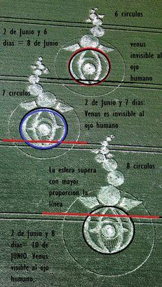 Ufopolis.NET: Un nuevo crop circle ilustra la salida de Venus de la constelacion de Tauro