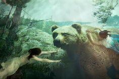 Mesikämmen, 2011 #fineart #photography #susannamajuri #underwater