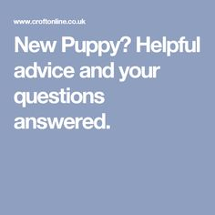 New Puppy?  Helpful advice and your questions answered.