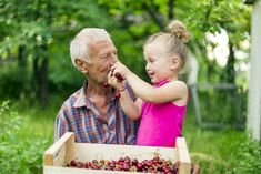 Cherries in a Gout Diet Natural Remedies For Gout, Gout Remedies, Cherry Salsa, Cherry Tart, Cherry Products, Gout Diet, Sources Of Fiber, Sweet Cherries, Quick Snacks