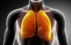 My advice! Always Consult your physician or health care provider first before trying Natural Treatments. // 15 Plants and Herbs That Boost Lung Health, Heal Respiratory Infections And Even Repair Pulmonary Damage. Health Heal, Health And Wellness, Health Tips, Holistic Wellness, Alternative Health, Alternative Medicine, Natural Medicine, Herbal Medicine, Chinese Medicine