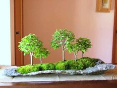 Container Plants, Container Gardening, Bonsai Forest, Moss Garden, Interior Garden, Ikebana, Nice View, Potted Plants, Terrarium