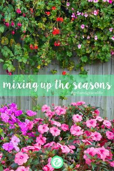 """""""I've had many days like this, days that start with one season and end with another. I've also journeyed through weeks where it seems my heart would always be warmed by a summer sun, and others when the bitter cold chill of a howling winter wind seemed like it would never end.""""  Check out this new post from Clare! #gritandgracelife"""