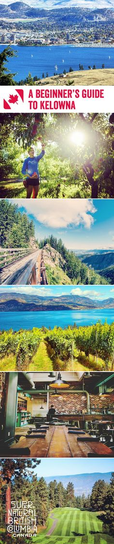 Outdoor recreation, naturally beautiful landscapes and deliciously fresh food is rife in Kelowna, a wonderful city nestled in the verdant Okanagan Valley. Here's our beginner's guide to this picturesque and charming destination
