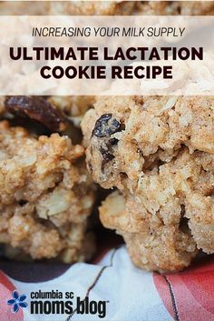 Increase Your Milk Supply :: Ultimate Lactation Cookie Recipe   Columbia SC Moms Blog