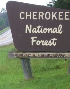 Cherokee National Forest - Tennessee  Kirk and Mandy live near here.  Got to visit while we were there for their wedding.
