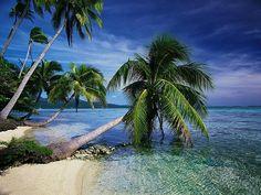 I love anything tropical!  I need a vacation!