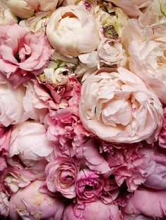Peonies - my fav flower. My grandma used to have these...gorgeous and sweet-smelling.