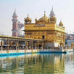 The Golden Temple Amritsar Punjab India.  #GoldenTemple #HarmandirSahib #india #Punjab #Amritsar #Sikhism #Sikh #punjabi #TravelIndia #incredibleindia #indiaig #Travelgram #ig_india #northindia #indiagram #_oye #gf_india #_soi #wassupindia #IgersAmritsar #yin_India #ohmyindia #igers #indiapictures #desidiaries #india_ig #Mumbaikar #Haryana #Sirsa #yamunaexpressway  By @kishanth via @india_ig