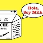 Spanish Chiste