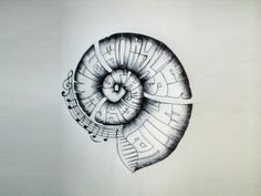 Nautilus shell with music notes tattoo Wallpaper