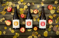 Tandem Cider from Northern Michigan, one of our favorites.