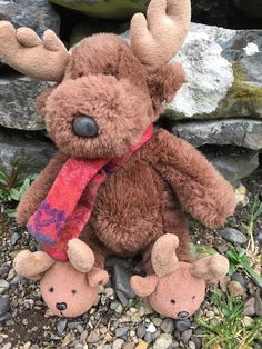 Found on 11 Apr. 2016 @ Achnaha, Ardnamurchan. Deer soft toy with deer slippers found on the road between Kilchoan and Sanna Bay in Ardnamurchan. Visit: https://whiteboomerang.com/lostteddy/msg/166wgk (Posted by Mairi on 11 Apr. 2016)