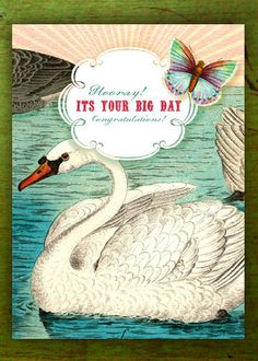 Illustrated Greeting Cards by Cartolina