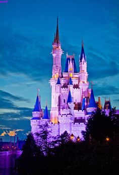 Cinderella's Castle - Walt Disney World - Orlando, FL