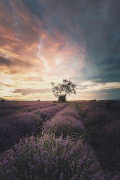 enchanting-landscapes: Dmitry Kupratsevich http://ift.tt/2kjBusN