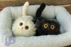 Domestic gryphon kittens / Cria de grifo domestico by AlvaroFuegoFatuo on DeviantArt