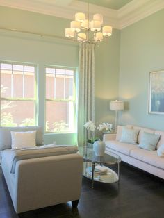 Mint Living Room Color This Screams To Me Love It