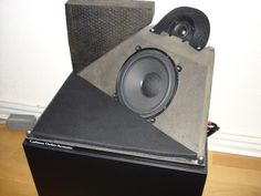 Carlsson Ortho-Accoustic speaker