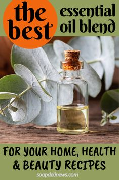 Best essential oil blends to have for ALL of your natural home, health