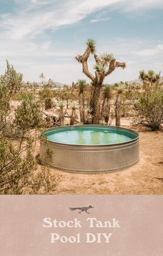 A stock tank pool is a great and affordable way to cool down in the summer. In this DIY, we go over all of the parts you need to make your own. Stock Pools, Stock Tank Pool, Mini Pool, Amazing Gardens, Beautiful Gardens, Round Stock Tank, Dipping Pool, Container Pool, Container Homes