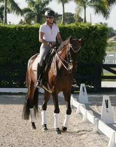The Basic Fundamentals of the Training Pyramid, Leg Yielding and the Rider's use of the Leg Aids | Dressage Headlines