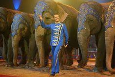 Circus Elephant Headdress Tattoo Elephant headdress circus tattoo Headdress Tattoo, Circus Tattoo, Tattoo Elephant, Animals, Elefant Tattoo, Animales, Animaux, Animais, Animal