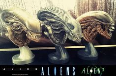 @christiansvedmanart Happy #alienday, people! Here's my trilogy of Alien busts. Sculpted and painted by me.