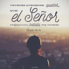 Ustedes quédense quietos, que el #Señor presentará batalla por ustedes. -Éxodo 14:14 #Fe #ExploraDios