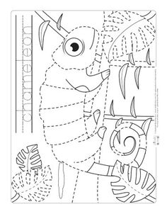 """Safari and Jungle Animals Tracing Worksheets - Itsy Bitsy Fun - Chameleon coloring page for kids. """"Chameleon coloring page for kids. You are in the right place a - Reptiles Preschool, Preschool Jungle, Les Reptiles, Preschool Activities, Preschool Crafts, Chameleon Craft, Mixed Up Chameleon, Chameleon Color, Tracing Worksheets"""
