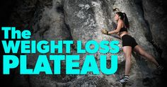 What is the weight loss plateau? This term is used to describe a situation where the body has become incapable of losing any further weight. The plateau is hit when the body develops tolerance for an individual's diet/ weight loss regimen, thus allowing the metabolic rate of the body to adjust and hindering further weight loss. Most diet books  ignore the existence of the plateau, primarily because it can be seen as negating the purpose of the diet and is, therefore, bad for marketing. H...