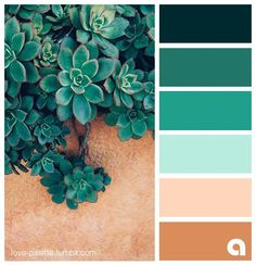 Discover recipes, home ideas, style inspiration and other ideas to try. Pantone Colour Palettes, Color Schemes Colour Palettes, Pastel Colour Palette, Colour Pallette, Pantone Color, Color Combos, Vintage Color Palettes, Green Palette, Aesthetic Colors