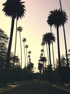Beverly Hills, CA | Julius Lasin, Flickr http://www.getitstraightbraces.com