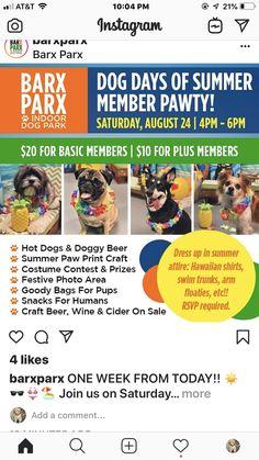 Paw Print Crafts, Indoor Dog Park, Dog Days, Hot Dogs