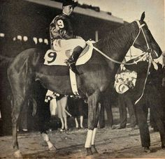 Phar Lap after his win in the Agua Caliente