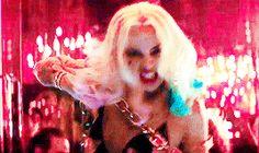 Harley ❤
