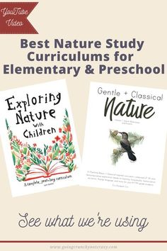 Nature study homeschool curriculum breakdown for preschool, kindergarten, and elementary year.   She what we're using in this YouTube video  #homeschool #kindergarten #naturestudy Homeschool Kindergarten, Homeschool Curriculum, Preschool, Alternative Education, Mindfulness For Kids, Charlotte Mason, Nature Study, Family First, Kids Health
