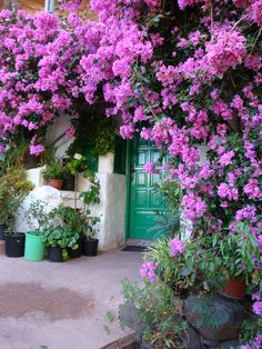 green door, gran canaria