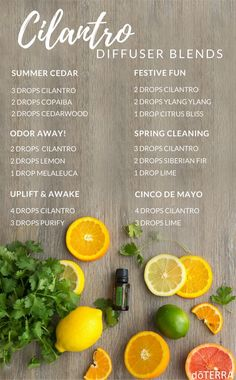 doTERRA Purify Cleansing Blend Uses with Cleaning & Other Recipes Essential Oil Diffuser Blends, Essential Oil Uses, Doterra Diffuser, Aromatherapy Diffuser, Aromatherapy Recipes, Diffuser Recipes, Doterra Essential Oils, Doterra Blends, Living Oils
